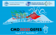 "Mini-colloquium streaming Talk at ""CMD2020GEFES"""